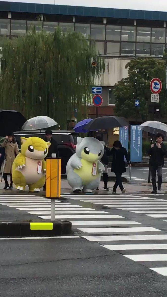 横断歩道を渡るサンド