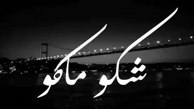 كذبوا علي الف كذبه  و ظنوني في الحب كاذب ..💔 #malak
