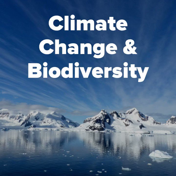 #Biodiversity Action is #ClimateAction! We must promote wise use and preservation of biodiversity as part of our approach to fighting #ClimateChange. The more voices that are raised to support this at #COP24 and into the future, the better it will be for #PeopleAndPlanet