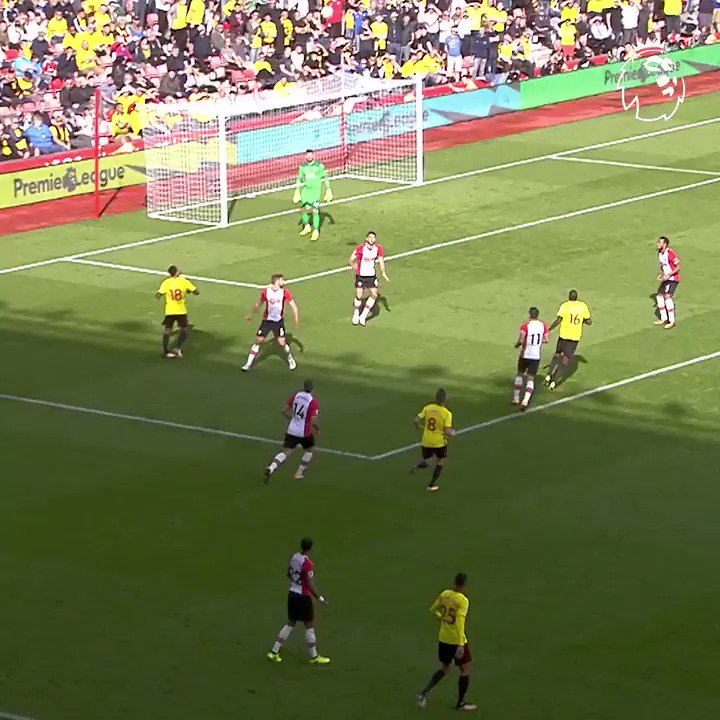 Dutch delight to get @WatfordFC fans on their feet 🐝  #GoalOfTheDay @daryljanmaat89