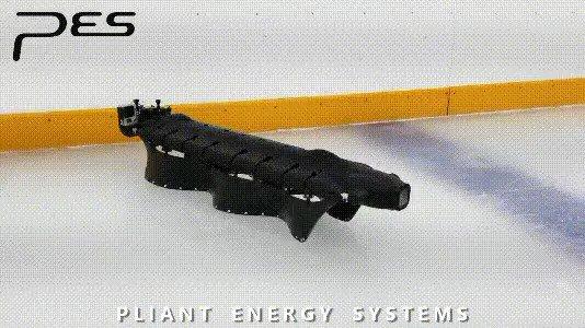 ~~~~ 🤖🐛 What swims like a ray, crawls like a millipede, jets like a squid, and slides like a snake?  👀 https://www.pliantenergy.com/home-1/  #Robotics
