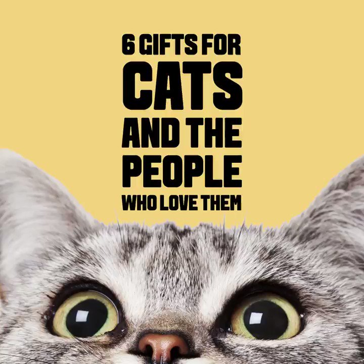 Let's be clear—these gifts are not also for humans who happen to have cats. These gifts are for the cats themselves to enjoy. We know who the real boss is here. https://trib.al/VjJfwRv