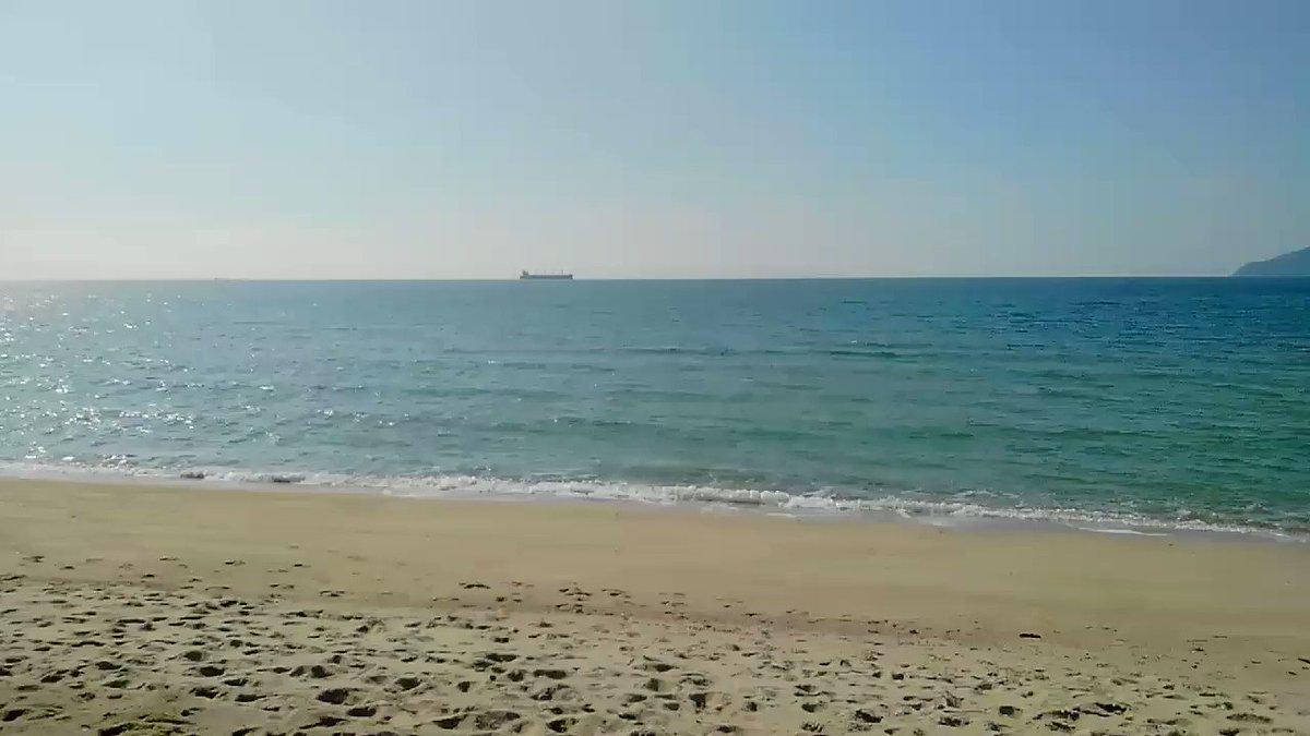 海が見たいと言うので、歩いてやって来ました。光市虹ヶ浜。 https://t.co/Qw1lWbgqVv