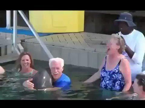 おじいちゃん vs.イルカ の戦い!どっちも可愛いから見てみて!