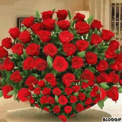 Happy 33rd Birthday Irina Shayk! bss desde España