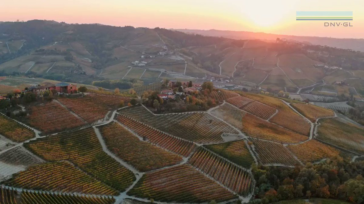 Image for the Tweet beginning: Three Italian #wine makers are