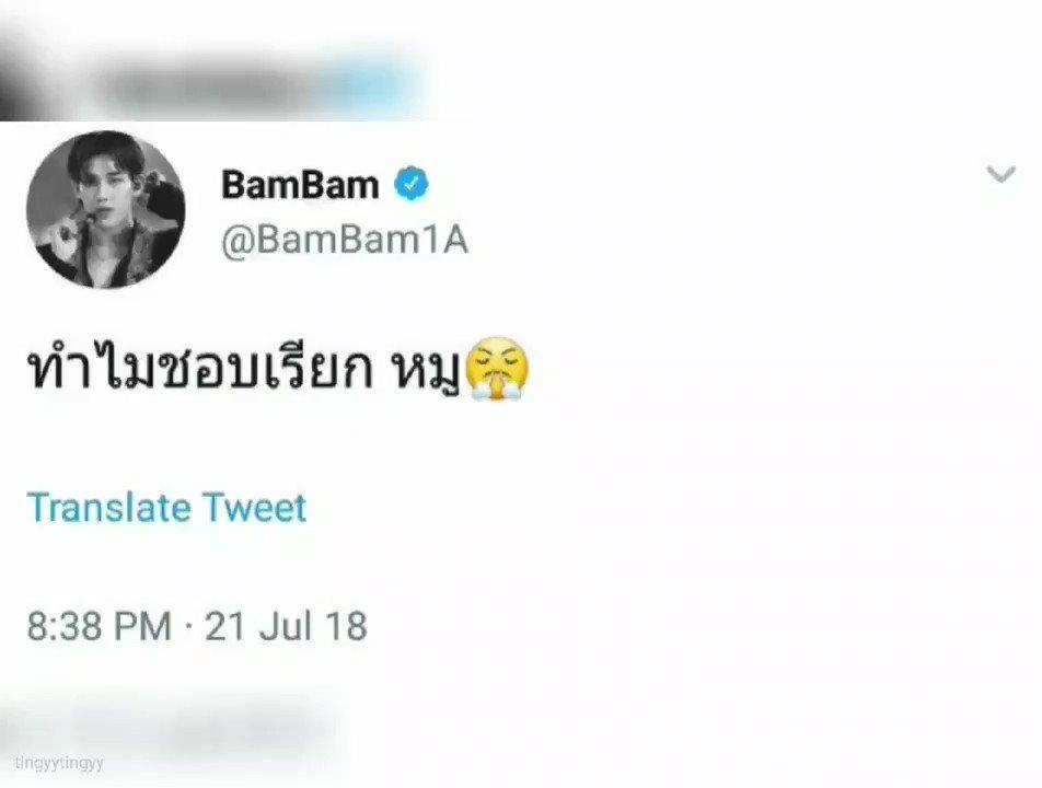 •́ɞ•̀ BamPiglet🥟만두's photo on bambam