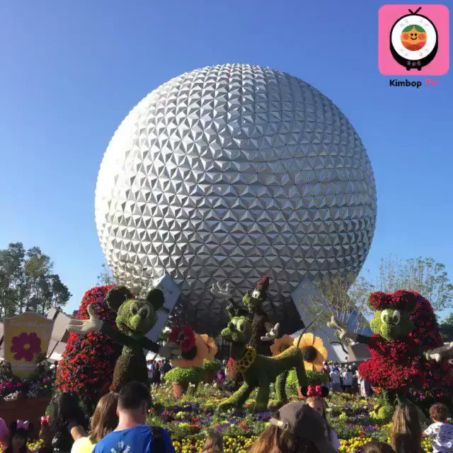 Hello #EXOLs! I gave you & @weareoneEXO a shoutout on my new #DisneyWorld #travelvlog~ Can you believe #Korea is not represented at #Epcot?? I hope #Disney adds some #KPop there soon~ Full video👉🏻 http://YouTube.com/KimbopTV  Thanks for your support!! #weareoneEXO #EXO #엑소 #KimbopTV