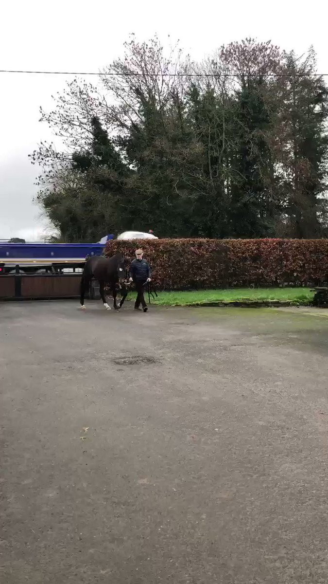 ITM's photo on #IrishStallionTrail