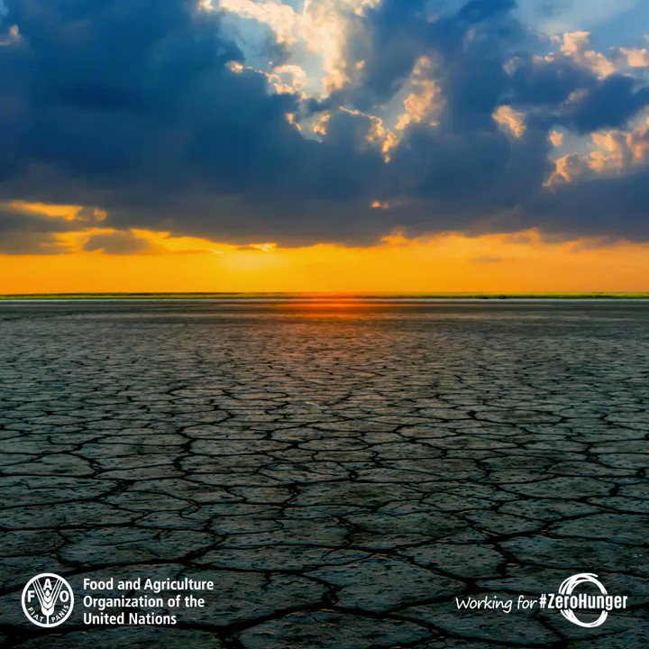 FAO's photo on #ClimateAction