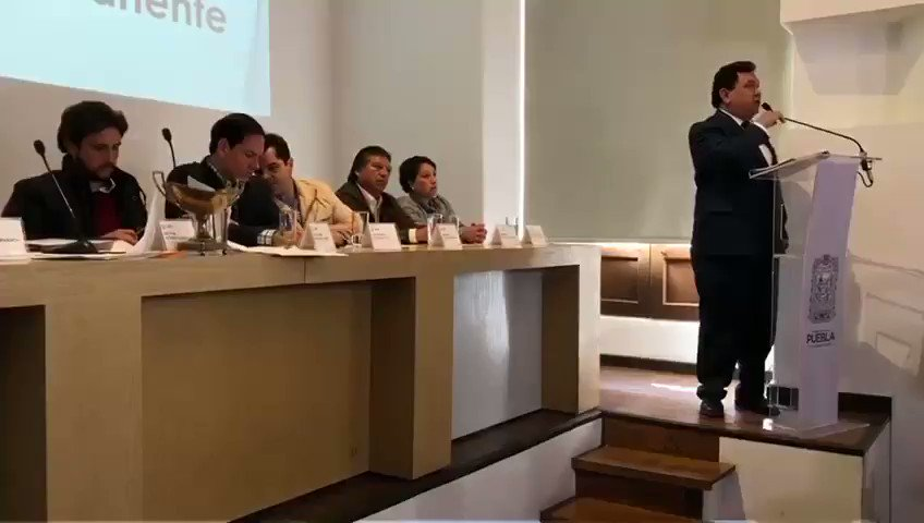 Pía Pineda's photo on Senadora