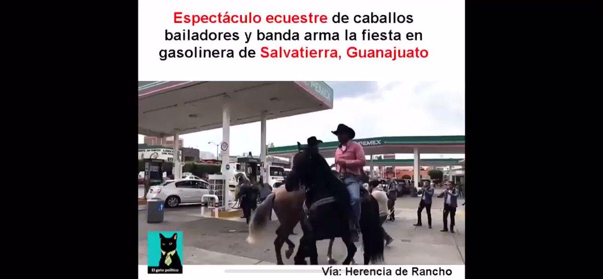 El Procastinador 🤦��♂�'s photo on #AmloTeApoyamosAl100