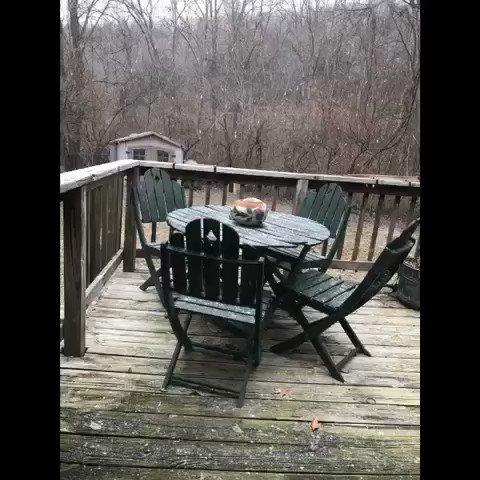 Jeff Briggs's photo on #snowpocalypse