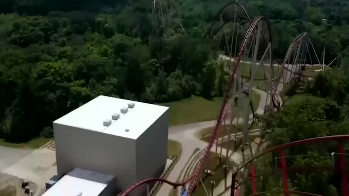 if freddie was on a rollercoaster