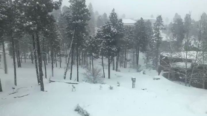 Another round of heavy snowfall for Los Alamos... 📹: Karen Morris @KOB4 #nmwx