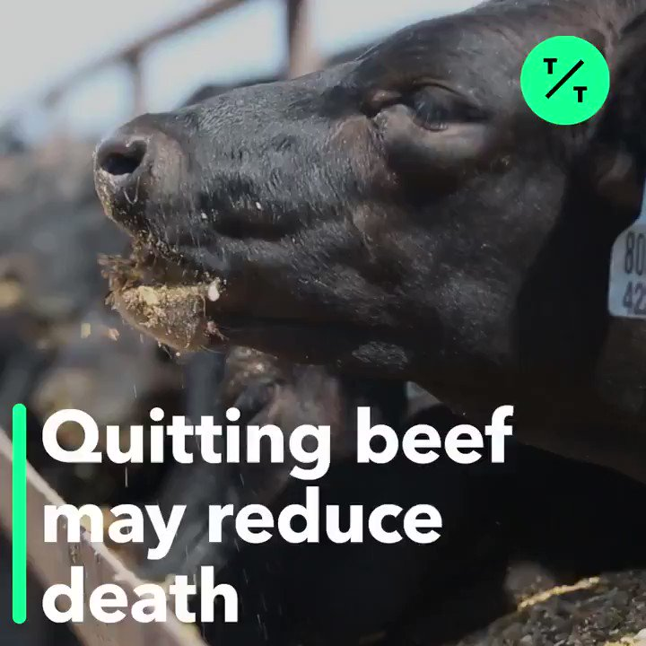 TicToc by Bloomberg's photo on Beef