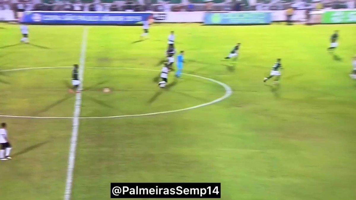 Palmeiras Sempre's photo on Figueirense