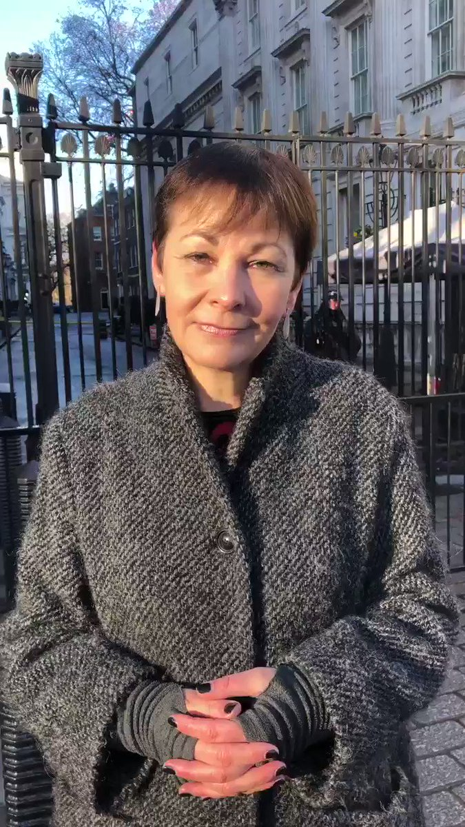 Caroline Lucas's photo on no deal