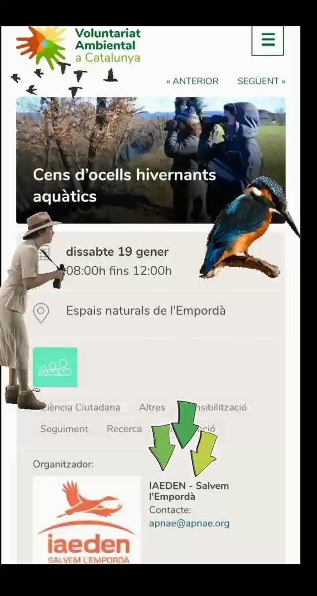Image for the Tweet beginning: Dissabte 19, cens d'ocells hivernants