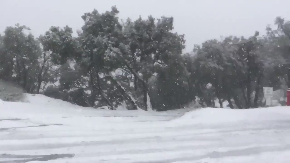 VIDEO: Snow is falling on Bay Area peaks! Here's a look at Mt. Diablo and Mt. Hamilton: https://abc7ne.ws/2SbNv8m
