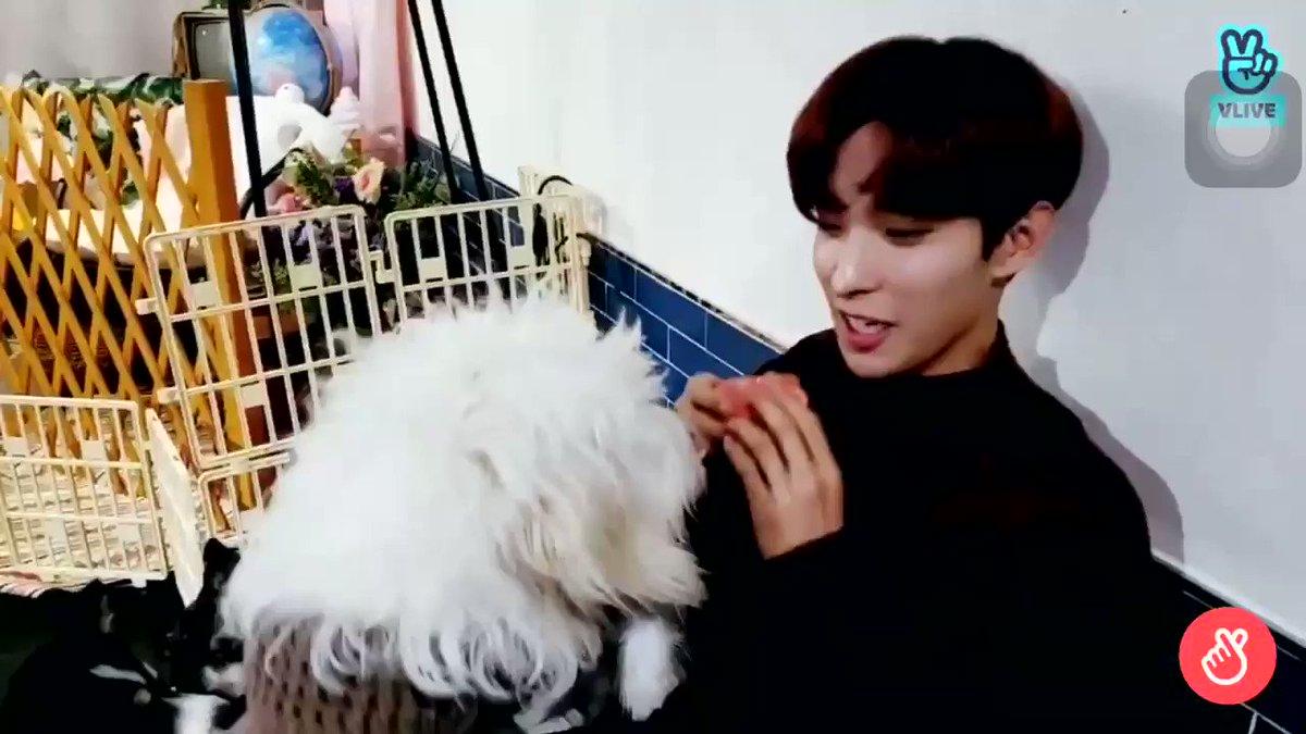 강아지 가까이 오니까 입술 살짝 마중나가는 거 너무 다정하고 귀여워ㅠㅠ...이석민+강아지 조합 최고...