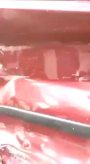 #Video Joven aprovecha accidente y roba a lesionada en automóvil, en #Oaxaca📹: Especial