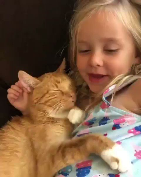 My heart! Sadly, Bailey is no longer with us 😔 My nanna used to sing me this song, and now I sing it to my niece. Just beautiful. #AdoptDontShop 🎥: @bailey_no_ordinary_cat