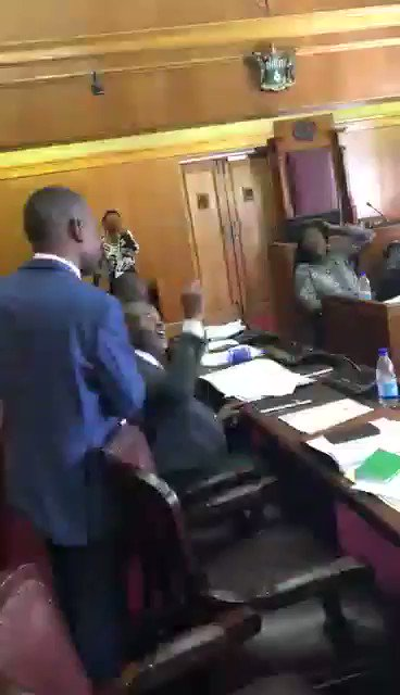 Sights and Sounds from Zimbabwe Parliament 🔥🔥🔥