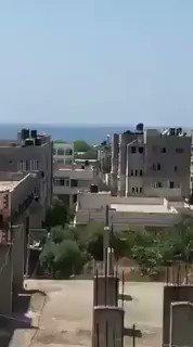 Dias Del Palestina's photo on Los 12