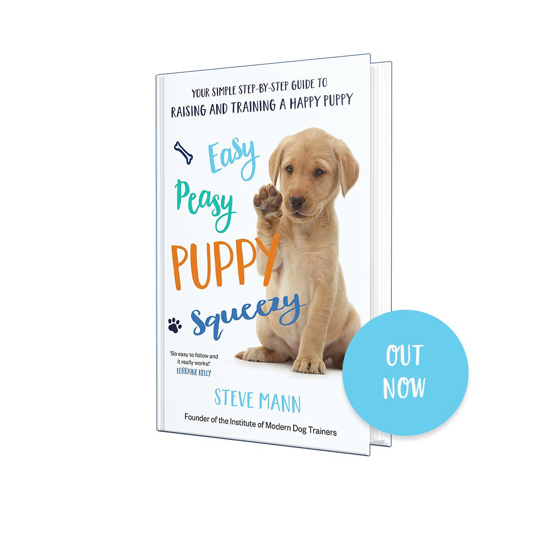 ⭐️⭐️⭐️⭐️⭐️ OVER 50 5-STAR AMAZON REVIEWS  @SteveMannDog's Easy Peasy Puppy Squeezy is your simple step-by-step guide to raising and training a happy puppy.  🐶🐕🐩  Out now: https://www.amazon.co.uk/Peasy-Puppy-Squeezy-step-step/dp/1788701607/…