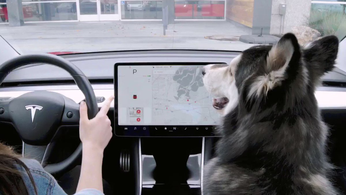 "Tesla introduces ""Dog Mode"" so Fido remains safe and comfortable in a locked car"