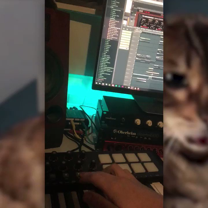 I took the liberty to produce a quick demo for your cat's next street hit