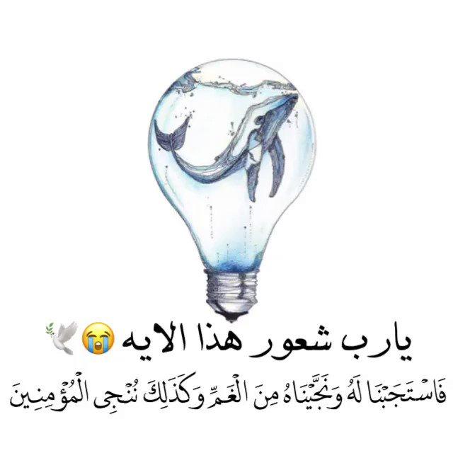 أُنس قلبّي:(♥️.'s photo on #صباح_الثلاثاء