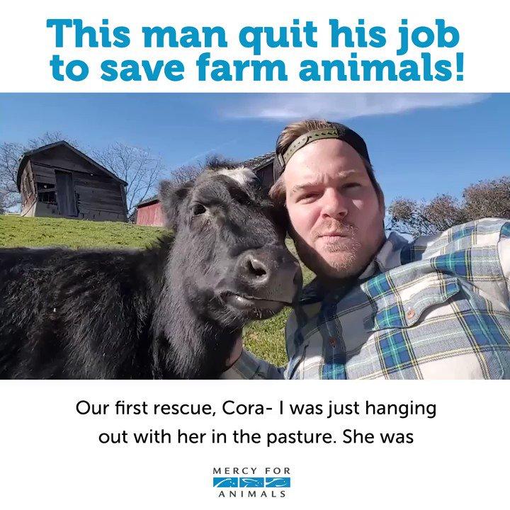 This man quit his job to save farm animals!