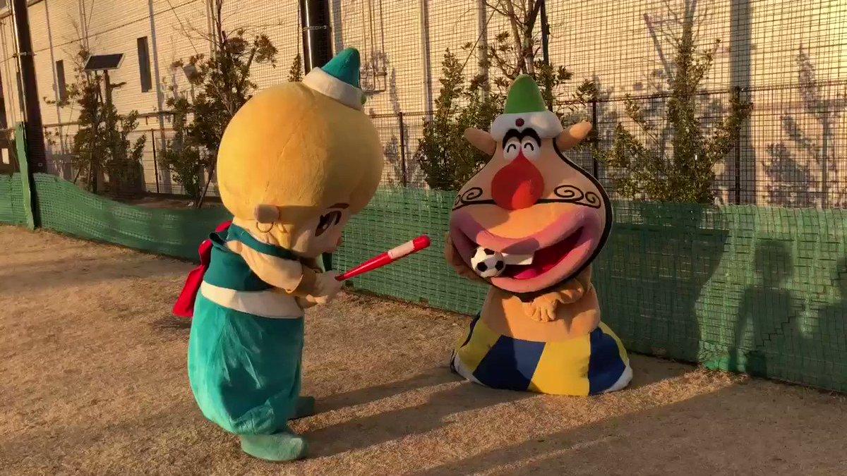 結局わては日本シリーズに呼んでもらえなかったでごじゃる。わてがダメならぷぅーたをなんとしても試合に出すでごじゃる😒福岡での試合に向けて猛練習開始でごじゃる