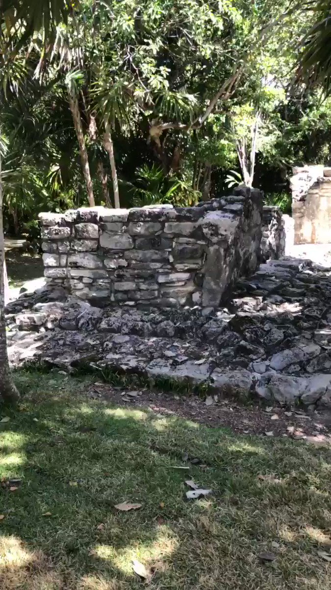 As Icarus continues its Kickstarter, I took off to Mexico and got a chance to return to the ruins of one of the most fascinating fallen civilizations ever- THE MAYANS. They inspired the Divine Jungle setting in the book and seeing their work firsthand was breathtaking as always.
