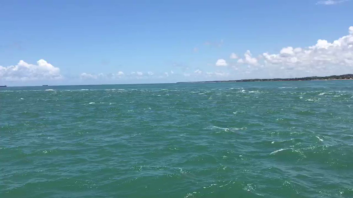 Commuter Ferry #Salvador to #Itaparica with its beautiful beaches #Bahia #Brazilpic.twitter.com/FQK5MXqqxS