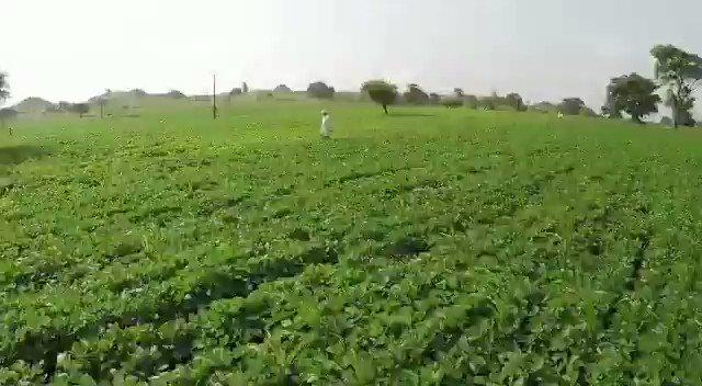किसानों की खुशहाली के लिये 'जय किसान फसल ऋण माफी योजना' बदलाव के लिए संकल्पित मध्यप्रदेश सरकार