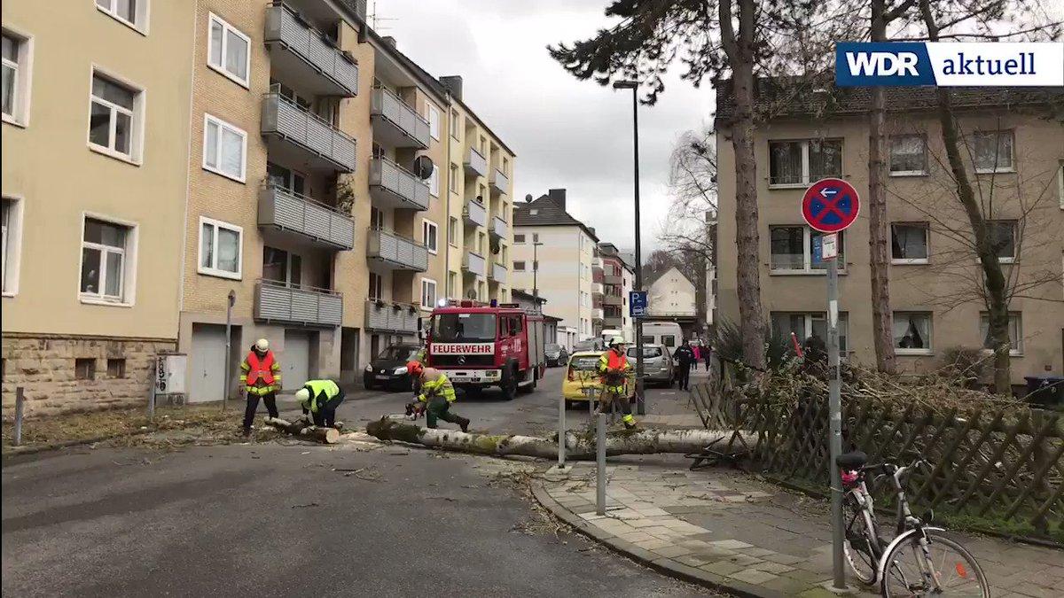 Wdr Aktuell Aachen