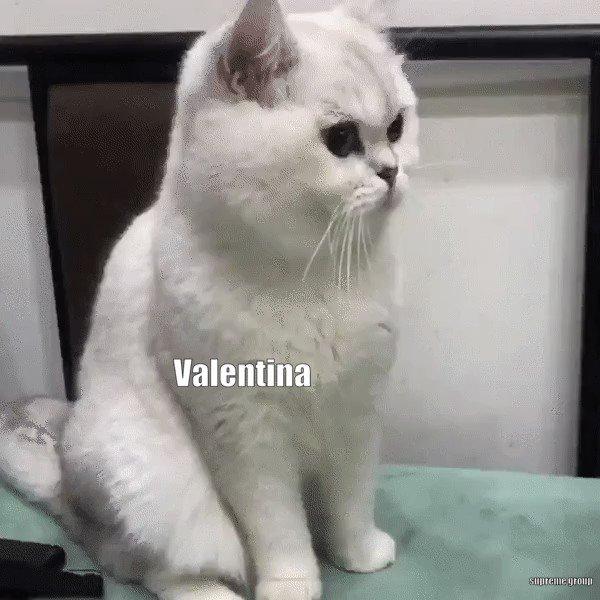 Miriam 🇲🇽 No se, pero me encantas's photo on #JuliantinaConEscándala