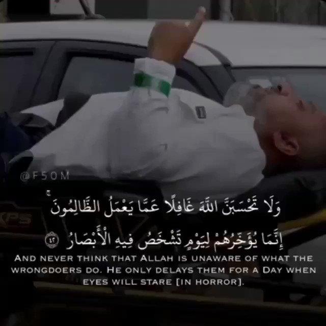 عبدالعزيز الروضان's photo on #حادث_نيوزيلندا_الارهابي