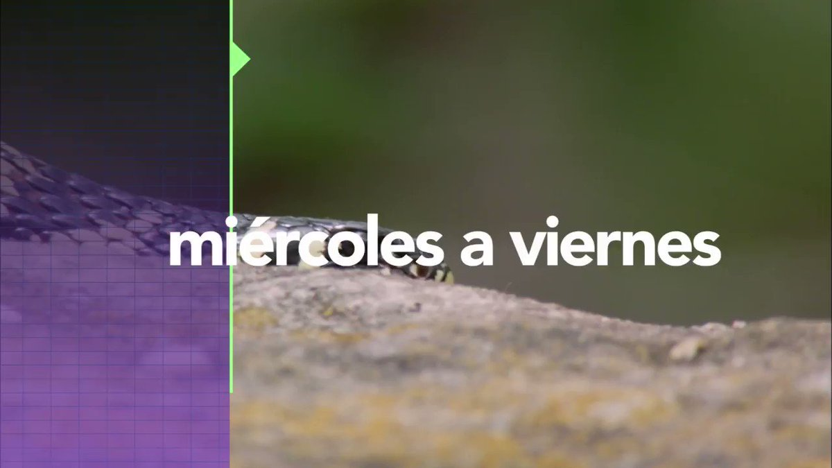 Televisión Nacional's photo on Jaguares
