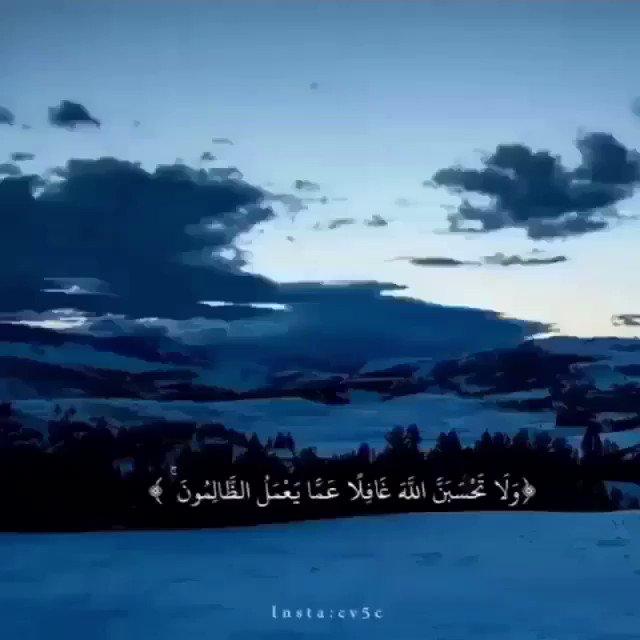 آيات's photo on #صوت_يجبر_الخاطر