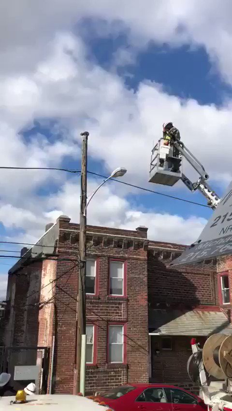 Verizon Employee Rescues Cat From Telephone Pole