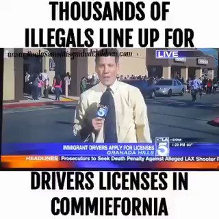 """Thousands of illegals line up for a driver's license in Commiefornia!  California has become a criminal State.   An illegal said, """" This is a wonderful day for our community. We finally see justice...""""  So many things wrong with THAT STATEMENT!"""