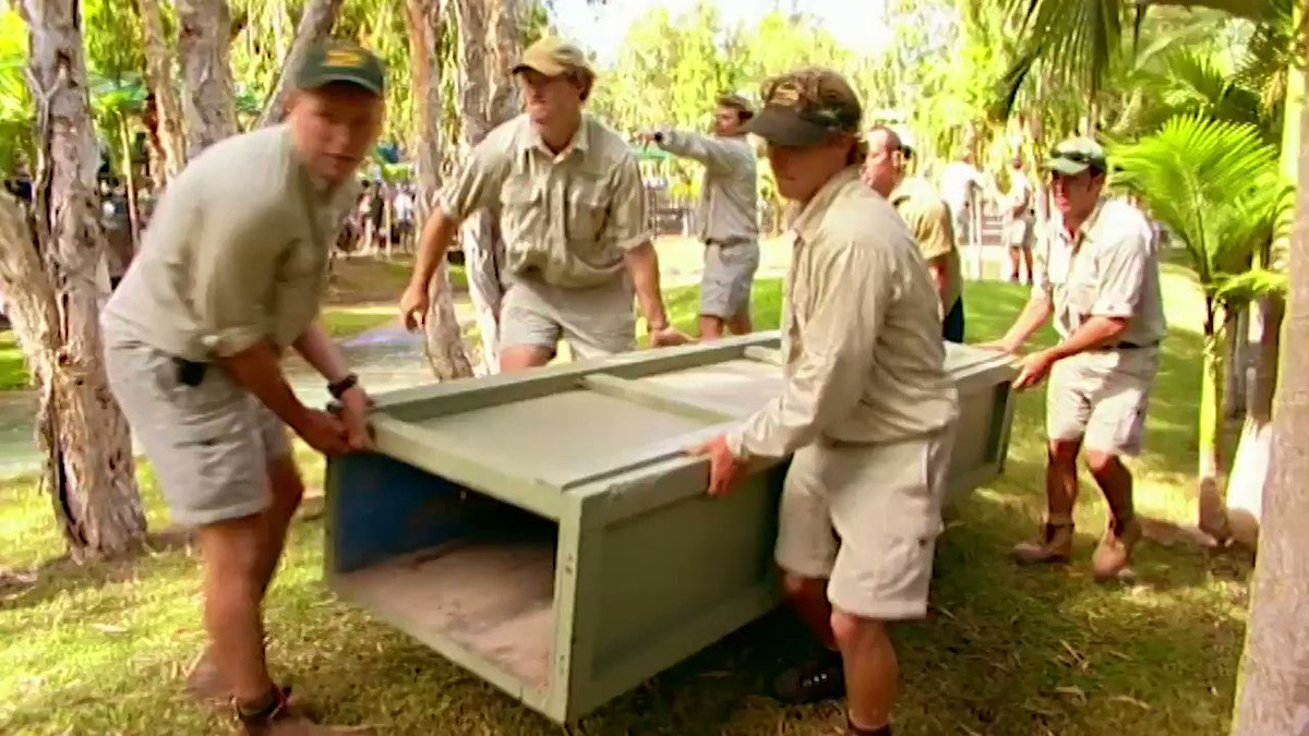 Tomorrow @AustraliaZoo we're opening early at 8:30 so you can join us to move our largest croc to his new pond. We learned from the best!