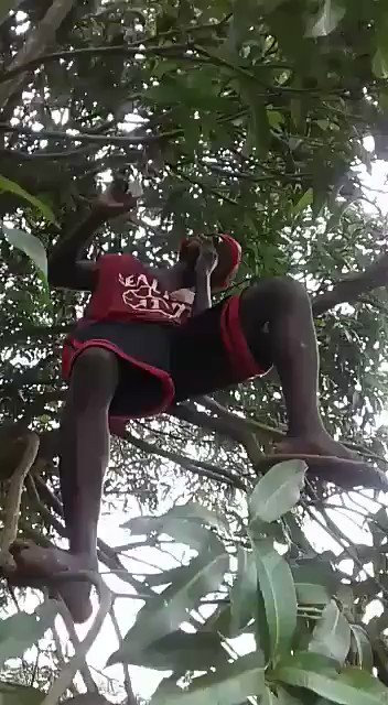 RT @SaleemMumo: Don't try this at Home 😂 https://t.co/ugE5aOcnoa