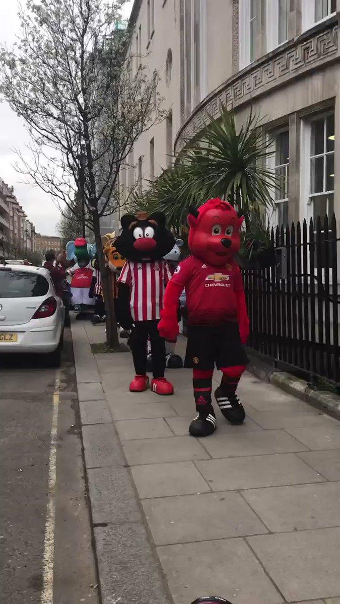 Hoy había reunión de mascotas de la Premier League. La escena es un tanto surrealista. 😅😂