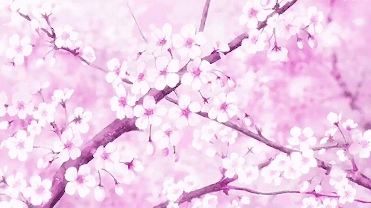 Открытки фарфоровую, картинки аниме цветы красивые движущиеся
