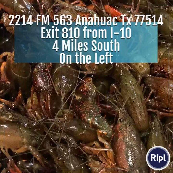 #AnahuacCrawfishExpress #FreshLiveNICELouisianaRedCrawfish #Crawfish #Party #SpringTime #Seafood #CrawfishBoil via http://ripl.com